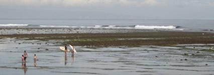 serangan surfing