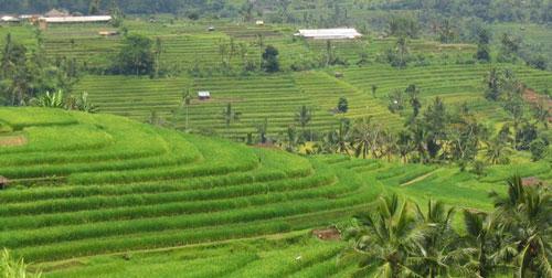 Six Fabulous Scenic Spots in Bali