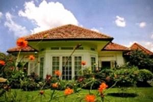 mini-pretty-house.jpg