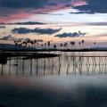 Must See Places in Nanggroe Aceh Darussalam: Sumatra