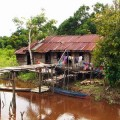 Things to See in Central Kalimantan