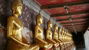 Day tours of Bangkok